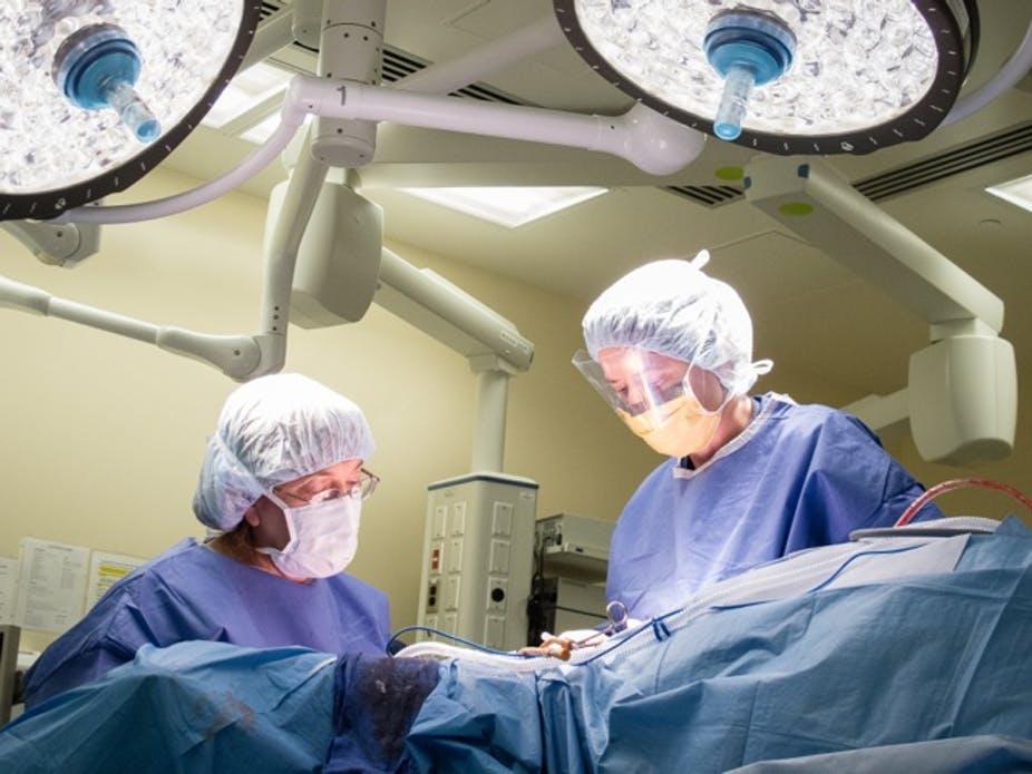 Barbi Surgery